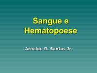 Sangue e hematopoese.pdf