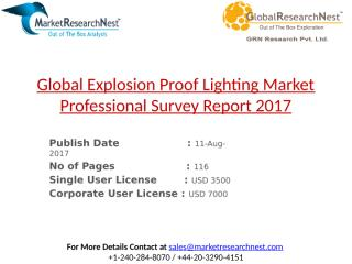 Global Explosion Proof Lighting Market Professional Survey Report 2017.pptx